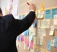 Business Management Programmes